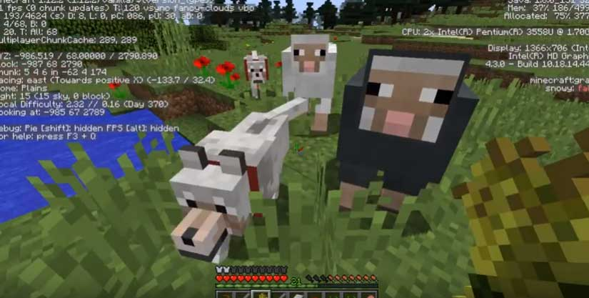 construieste in Minecraft