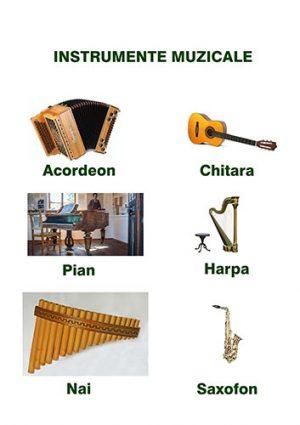 invata instrumentele muzicale